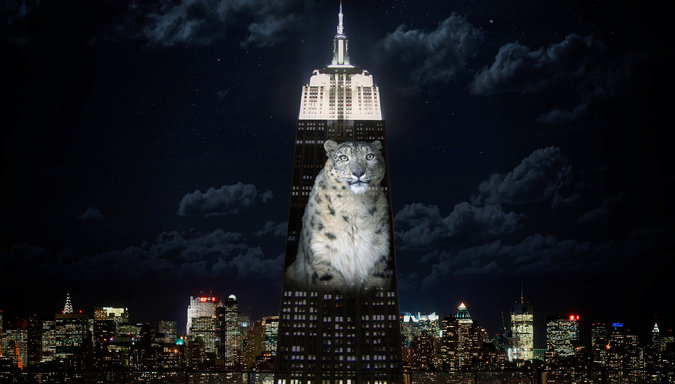 Take Action to Prevent 'Projecting Change' in NYC Image