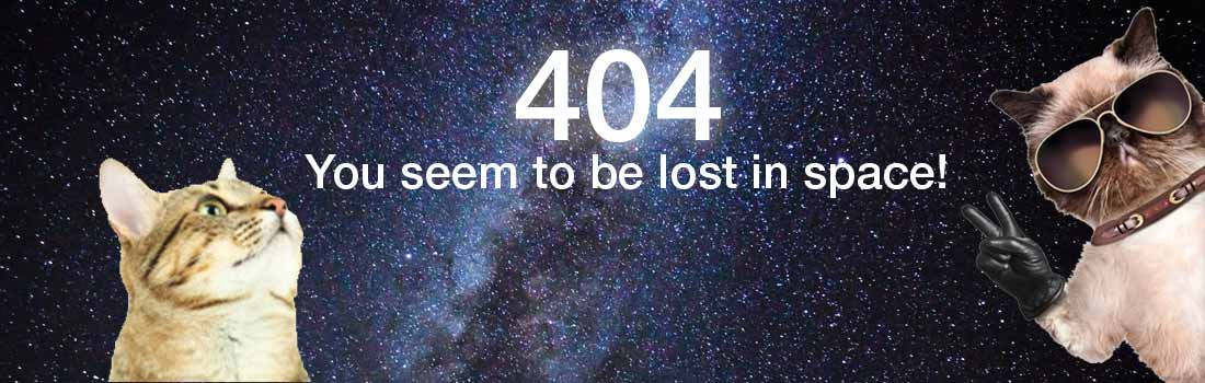 404 Error - This page is no longer available.
