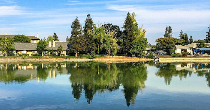 A neighborhood on a lake with tall trees reflected in the water.