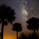 Kissimmee Prairie Preserve State Park Named Florida's First Dark Sky Place