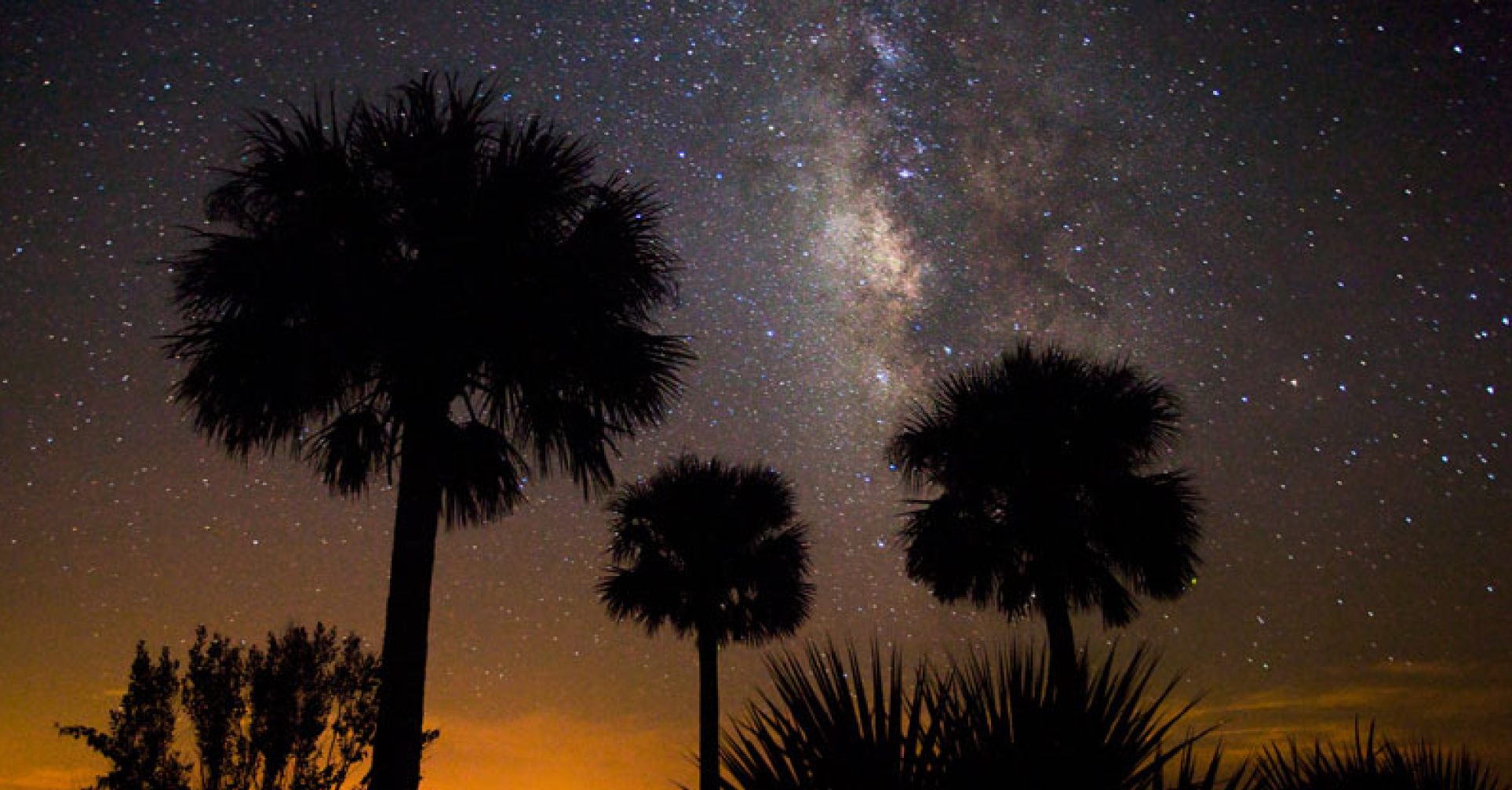 Kissimmee Prairie Preserve State Park Named Florida's First Dark Sky Place Image