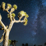 New National Monuments Protect Southern California Dark Skies