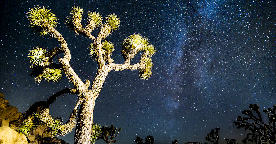 New National Monuments Protect Southern California Dark Skies Image