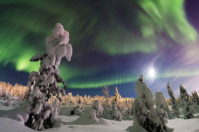 """""""The Enchanted Forest"""" by Lyubov Trifonova. The Moon and the northern lights lit up the snow-covered forest in Murmansk, northwestern Russia, Dec. 2014. The first winner of the 2015 International Earth & Sky Photo Contest, Beauty of Night Sky category."""