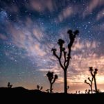Return Eagle Mountain Lands to Joshua Tree National Park!