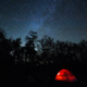 NPR's WGCU Brings Florida Listeners to Big Cypress National Preserve Dark Sky Park