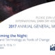 Reclaiming the Night: IDA's 2017 Annual General Meeting