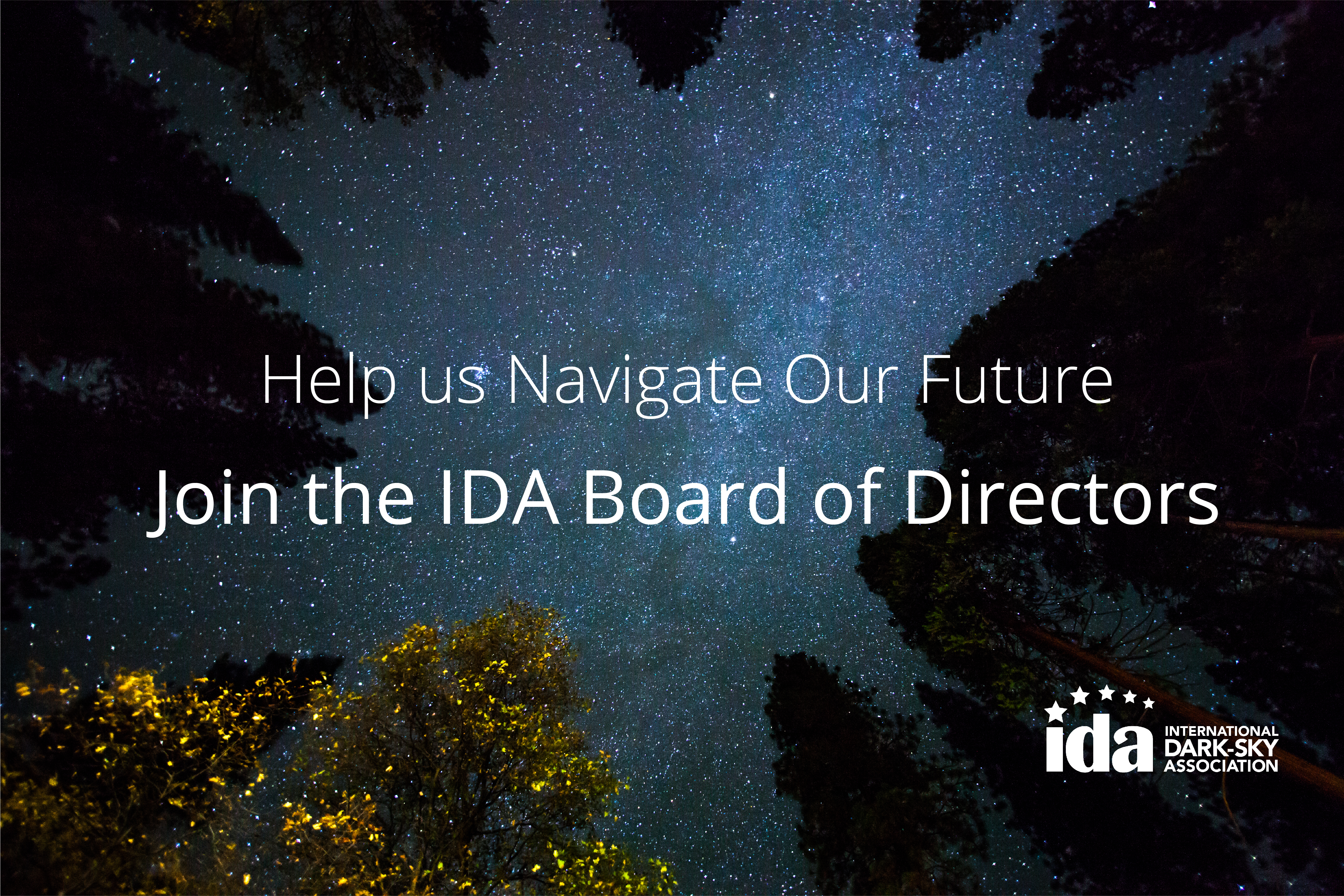 IDA Now Accepting Applications for 2017 Board of Directors – Now Closed Image
