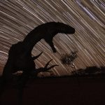 Queensland Becomes a Leading Light with Dark Sky Sanctuary Image