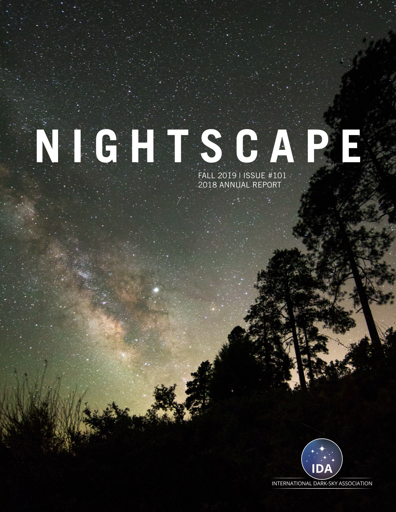 NIGHTSCAPE: IDA 2018 Annual Report Published Image