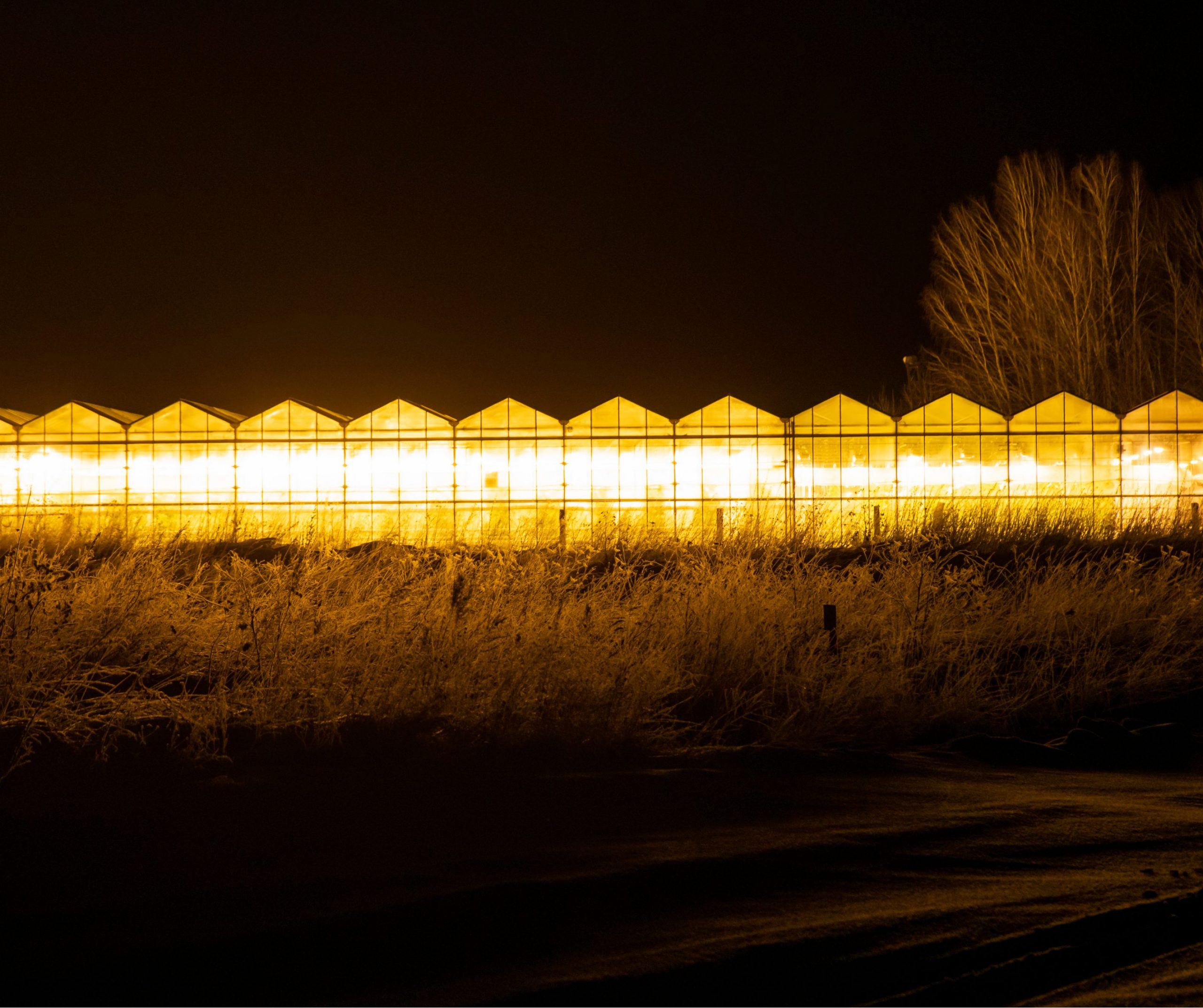 Light pollution from greenhouses at night