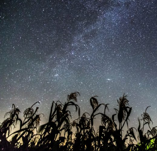 A view of the night sky from Lauwersmeer Dark Sky Park.